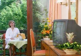 Danubius Health Spa Resort Sárvár - Szoba