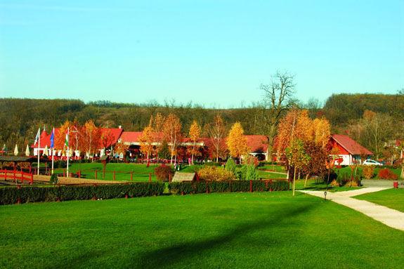 Lázár Lovaspark_Turisztikai szervezet , Lázár Lovaspark ,  ,