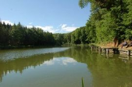 Deseda-tó_Látnivalók Kaposvár , Deseda-tó Látnivalók Kaposváron ,