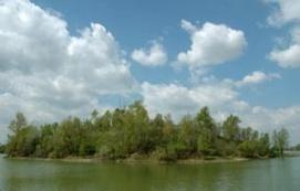 Délegyházi tavak_Ráckevei környéke kistérség Fürdő és strand ,...