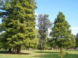 Öregpark Balatonalmádi