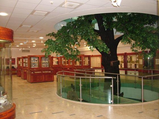 Mátra múzeum középszint