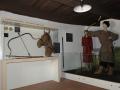 Gyenesdiási Avar Történeti Kiállítás: Kiemelt Múzeum látnivaló Gyenesdiáson