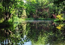 Kámoni Arborétum_Park és kert , Kámoni Arborétum parkok, kertek ,