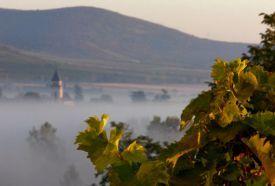 Tokaj-hegyaljai borvidék_Látnivalók Tokaj , Tokaj-hegyaljai borvidék...