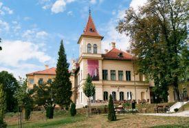 Vaszary Villa_ , Vaszary Villa  ,
