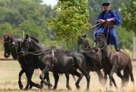Hortobágyi falunap Észak-Alföld Hagyományőrző, Hortobágyi falunap észak-alföldi hagyományőrző programok, népi kultúra programok Észak-Alföldön,