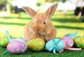 húsvéti akciók Egerszalók