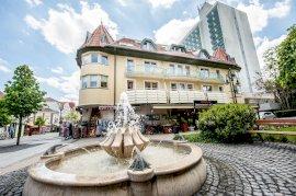 - gyógyfürdőhöz melletti szállodák Szepetnek