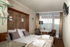Standard prémium erdőre néző kétágyas szoba