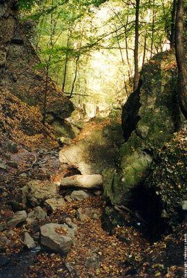 Pilis és a Visegrádi- hegység_Dunakanyar Természeti érték , Pilis...