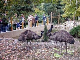 Állat- és Növénykert_Vadaspark és állatkert , Állat- és...