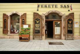 Fekete Sas Patikamúzeum_Fejér megye Látnivalók , Fekete Sas...