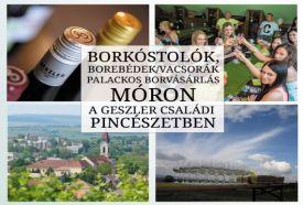 Geszler Családi Pincészet - Modern látványborászat_Fejér megye...