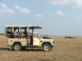 Hortobágy Wildlife Park_Safari park, zoo , Hortobágy Wildlife Park ,  ,