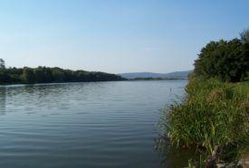 Malomvölgyi 2-es tó_Dél-Dunántúl Sport , Malomvölgyi 2-es tó...