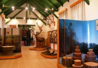 Erdészeti-, faipari és vasúttörténeti Múzeum_Zala megye Múzeum ,...