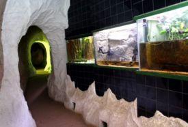 Akvárium-Terrárium_Dél-Dunántúl Vadaspark és állatkert ,...