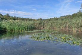 Kállósemjéni Mohos-tó Természetvédelmi...