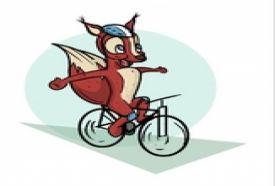 Nádas kerékpárkölcsönző_Fejér megye Egyéb , Nádas...