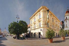 Művészetek és Irodalom Háza_Dél-Dunántúl Múzeum , Művészetek és...