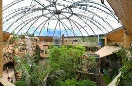 Nyiregyhaza Zoo, Zoo_Safari park, zoo , Nyiregyhaza Zoo, Zoo ,  ,