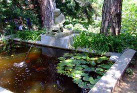 Pintér-kert Arborétum_Dél-Dunántúl Park és kert , Pintér-kert...