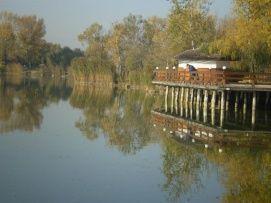 WF Szabadidőpark _Tatabánya és környéke Aktív kikapcsolódás , WF...