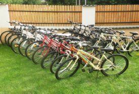 Zebra Bringa Kerékpárkölcsönző_Fejér megye Aktív kikapcsolódás ,...