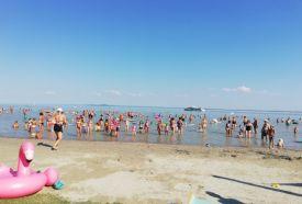 Beach-party_Balaton Egyéb , Beach-party balatoni ,  Balatonon ,