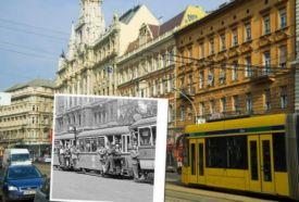 FOTÓ SZAFARI TEMATIKUS VÁROSNÉZÉSSEL_Budapest és környéke régió...